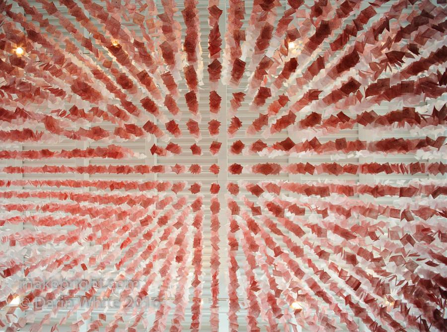 CAFKA-JanesWalk-Public Art tour 2016 083