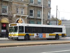 MBTA New Flyer D40LF