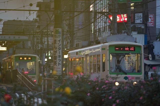 Tokyo Train Story 都電荒川線 2014年11月24日
