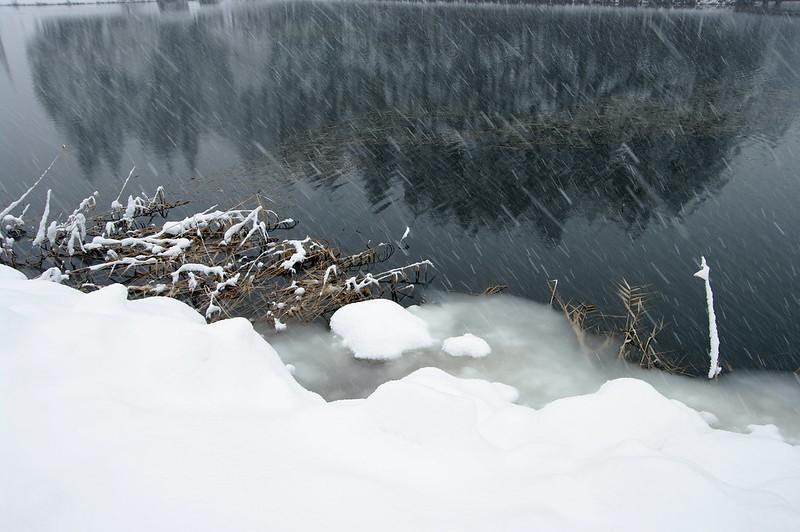 もうすぐすべてが雪の下へ_2014