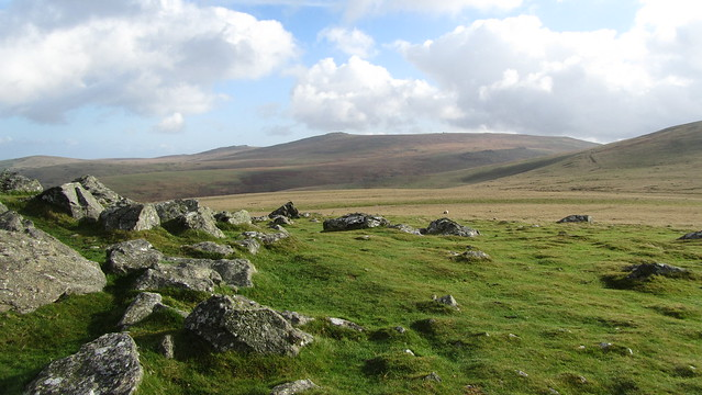 Looking to High Willhays and Yes Tor from Sourton Tors