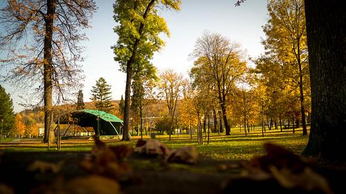 park autumn croatia hrvatska jesen lišće drveće orahovica sonya58