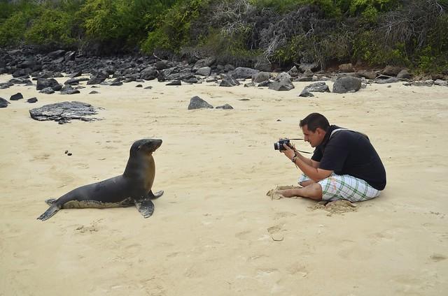 Sele fotografiando un león marino de Galápagos