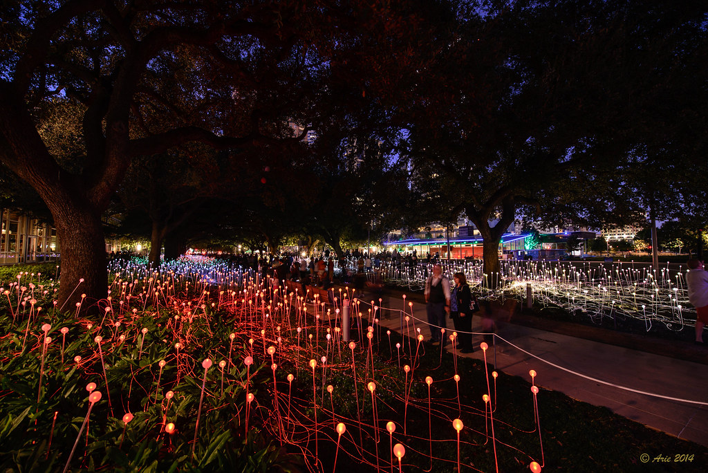 Bruce Munro's FIELD OF LIGHT