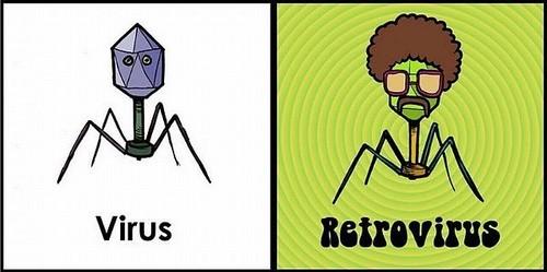 virus-retrovirus