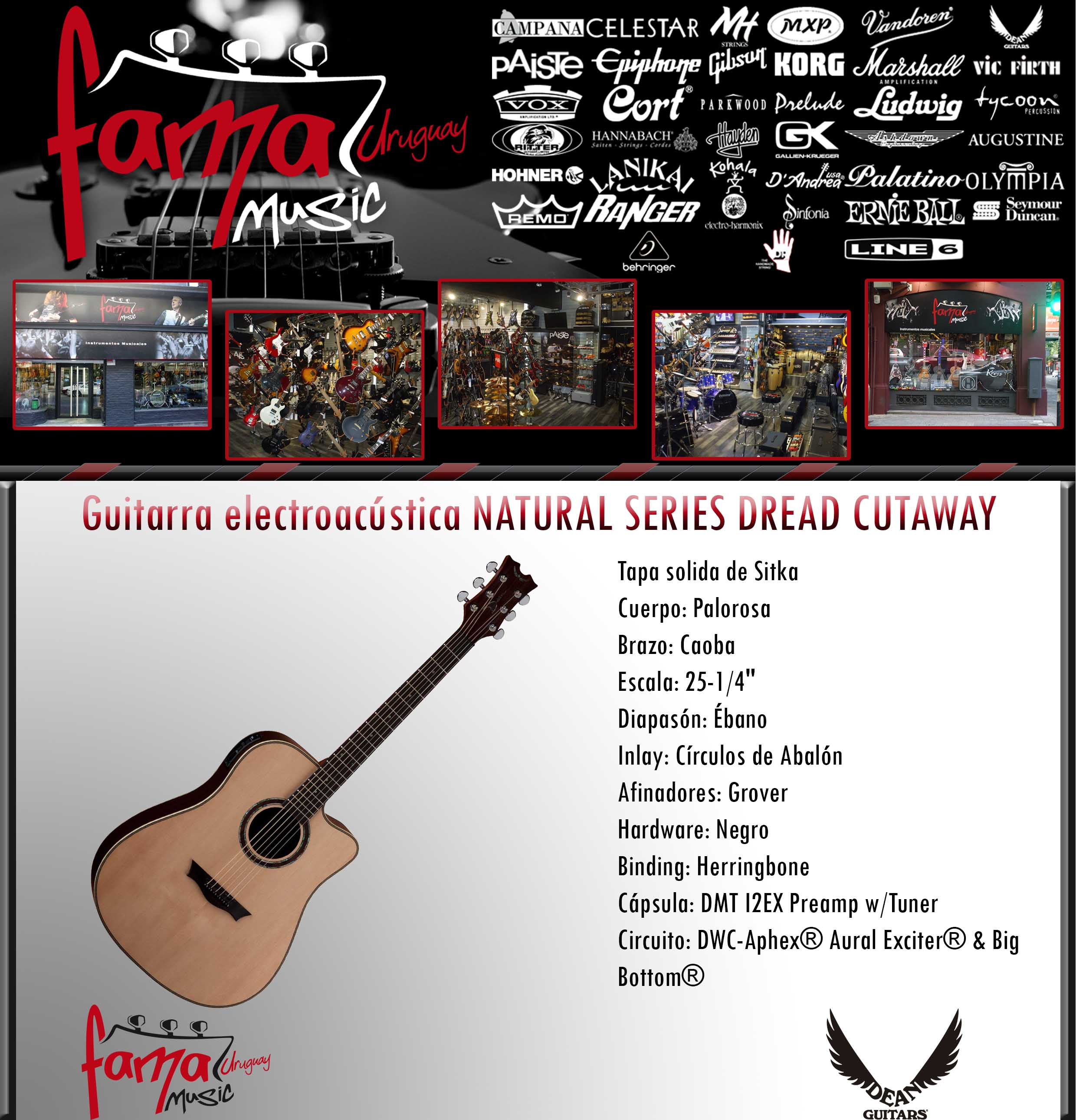 Guitarra electroacústica NATURAL SERIES DREAD CUTAWAY