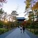 Path to a Nanzen-ji Autumn Sunset