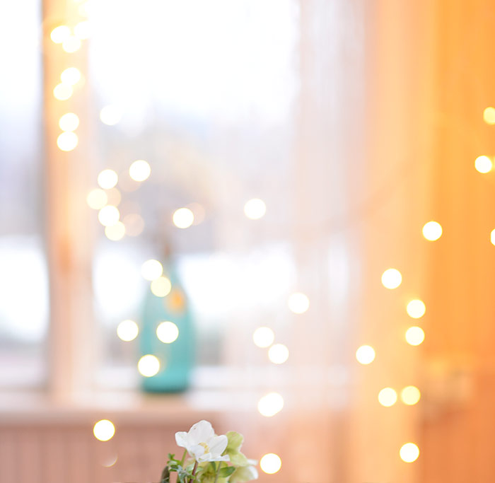 Fairy Lights And Hellebore