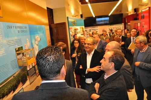 AionSur 15875430380_e0e066445e_d Convocada plaza de técnico de información turística en Ayuntamiento de Arahal Empresas Formación y Empleo