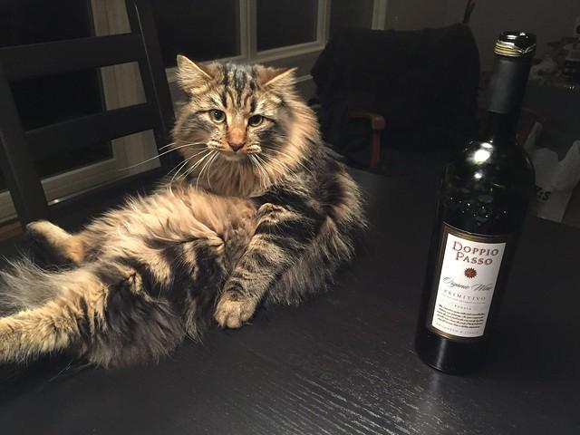 Svante dricker vin