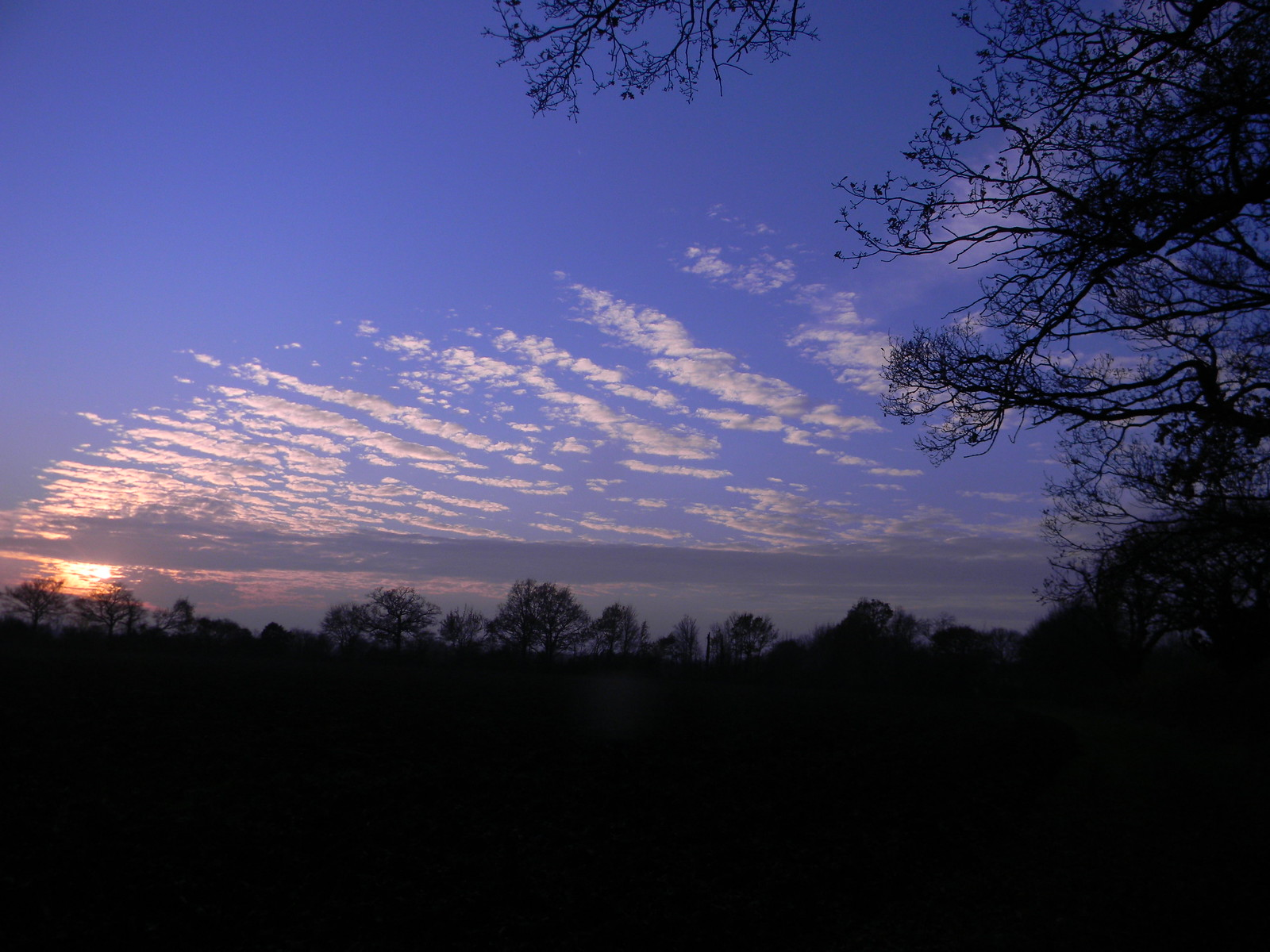 "Clouds in the sky (A fitting companion to ""cows in a field"") Wakes Colne to Bures"