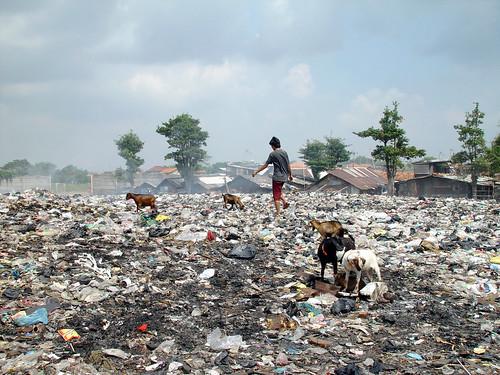 प्लास्टिक कचरे से पट रही है धरती