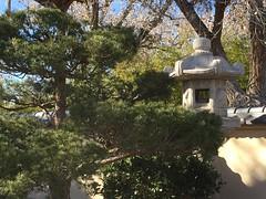 Japanese Botanical Garden Albuquerque New Mexico DSD18