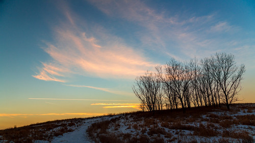 trees sky snow silhouette clouds sunrise canon grove cirrus 6d bloomingdale rodde forestpreservedistrictofdupagecounty meachamgrove fpddc kevinrodde kevinroddephoto kevinroddephotography