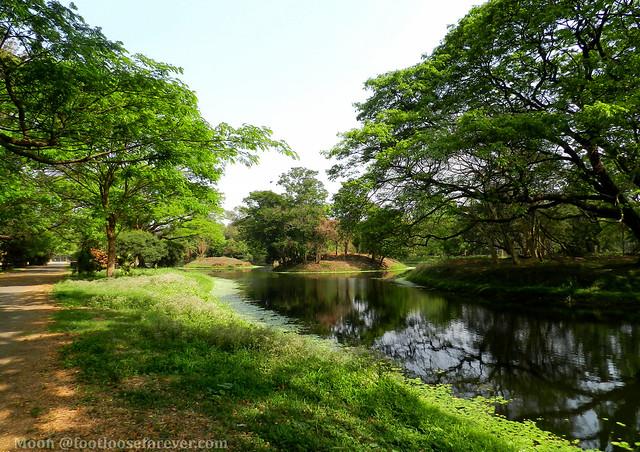 Landscape - Shibpur Botanical Garden #kolkata