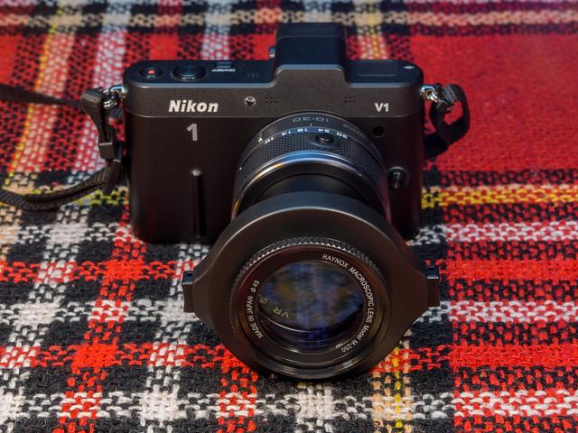 Shot with: Olympus OM-D E-M10 & Olympus 45mm f/1.8