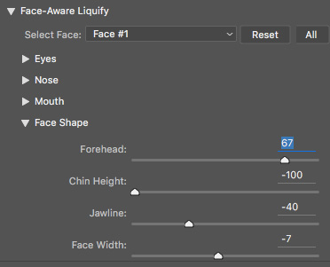 Face Tool Photoshop