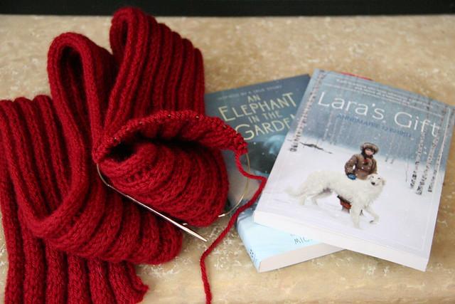 yarn along 10.29.14