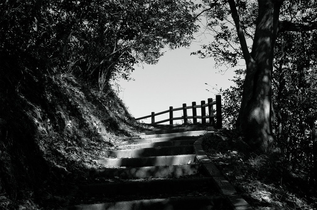 経ヶ岬展望台|京都府京丹後市丹後町