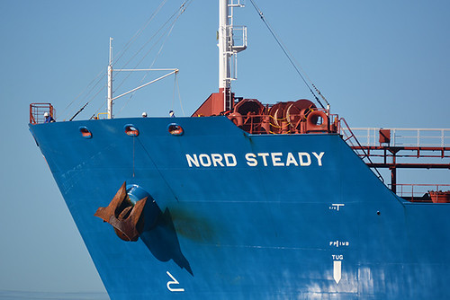 Nord Steady bow