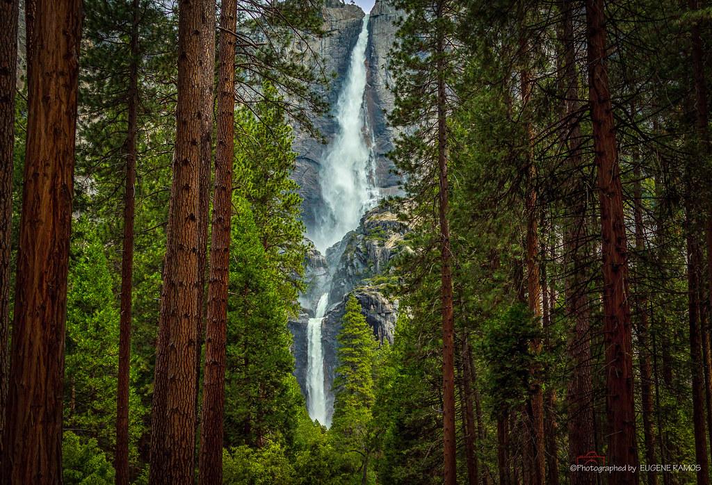 Yosemite Falls Summer of 2010
