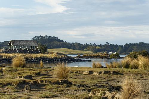 park wood city bridge newzealand nature landscape harbour shed scenic auckland shore nz inlet volcanic regional manukau waterscape mangere ambury lisaridings fantommst