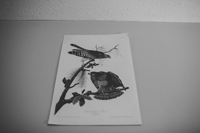 mackenziehopephotography-4649