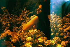 Katie Derham nude