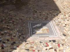 Pompeii 82