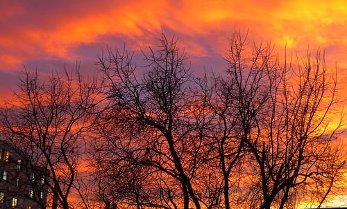 sky twilight multicolor amurg
