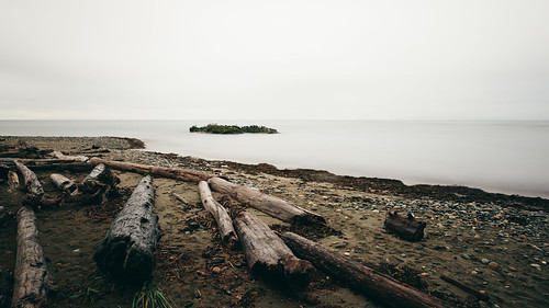 longexposure nature water outdoors washington cloudy smooth logs overcast pacificnorthwest deceptionpass canonef2470mmf28lusm bwnd1000x canoneos5dmarkiii