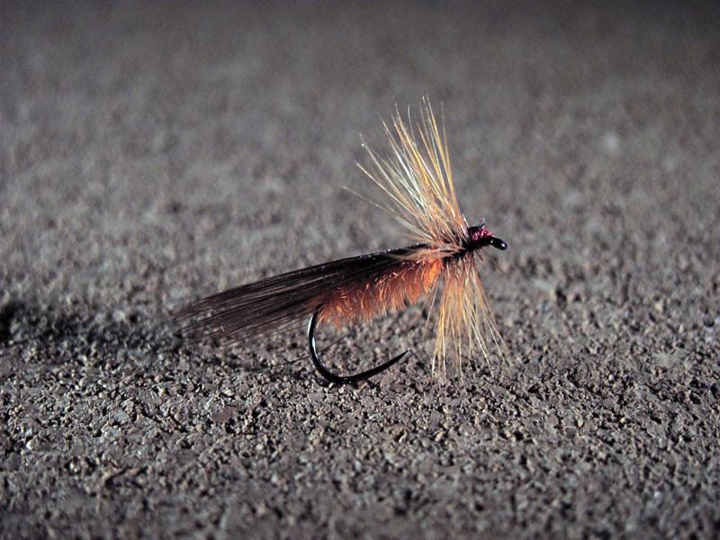 Mosca seca Tricóptero modelo 12