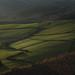 Peak District - Slope by Robert Maroszek