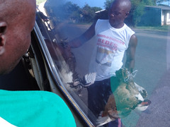 Vendor Sellng Live Duck to Minibus Driver, Central Mozambique