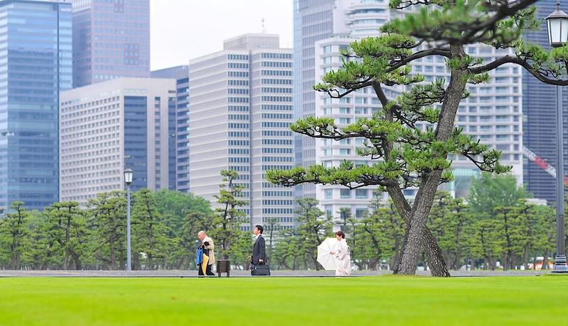 Palace grounds & tourists