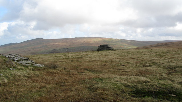 Branscombe's Loaf and the High Willhays ridge