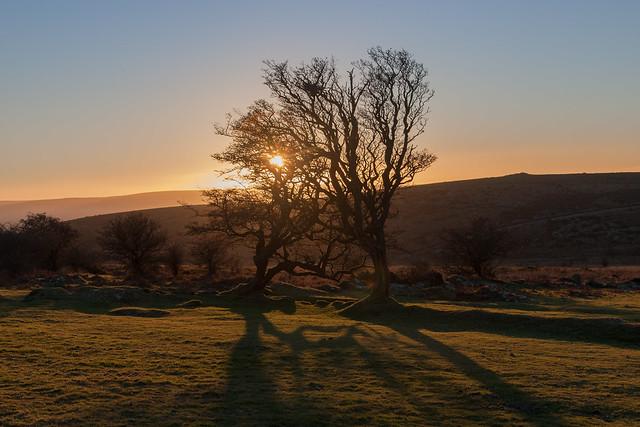 Dartmoor Golden Hour