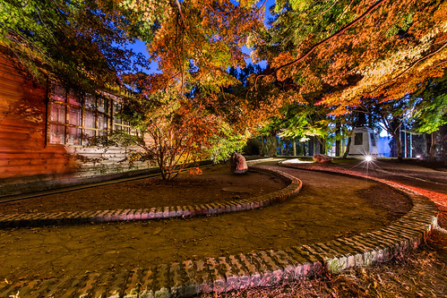 travel autumn color building fall horizontal night canon landscape maple tour farm taiwan nopeople resort clear taichung bluehour 風景 redmaple 台中 楓葉 梨山 1635mm 福壽山農場 松廬 canoneos5dmarkiii canon5dmarkiii 和平區