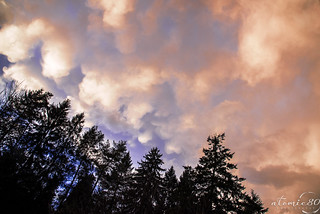 Cloud Horizons