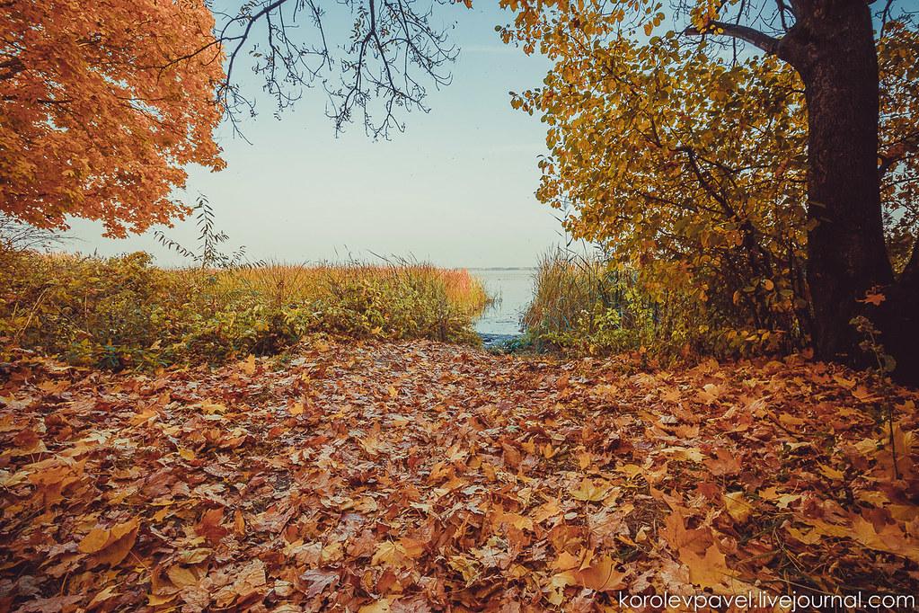 Autumn-249