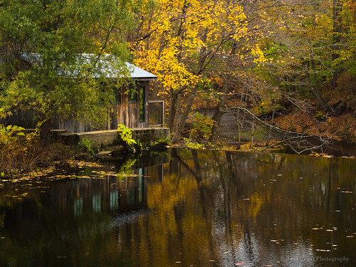 autumn trees reflection fall mill leaves architecture creek landscape pond massachusetts newengland olympus omd em5 microfourthirds 45mmf18mzuiko