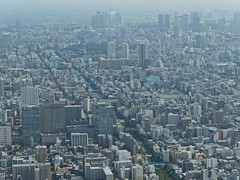 TokyoSkyTree030