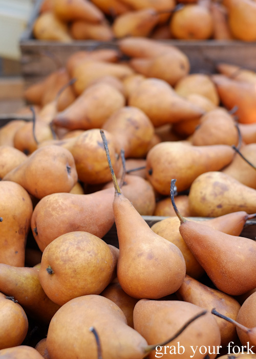 Buerre bosc pears at Abbotsford Convent Slow Food Farmers Market