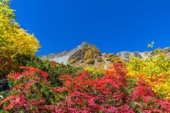ナナカマドと北穂高岳