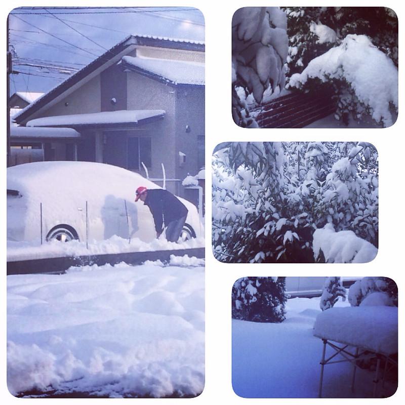 Снегопады нынче рановато…