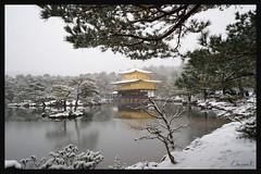 日本京都-金閣寺-雪.29