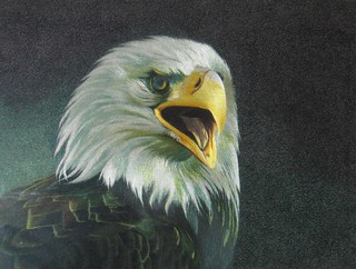 Eagle hand embroidery art painting