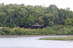 IMG_8505 Rain in Taman Alam Kuala Selangor