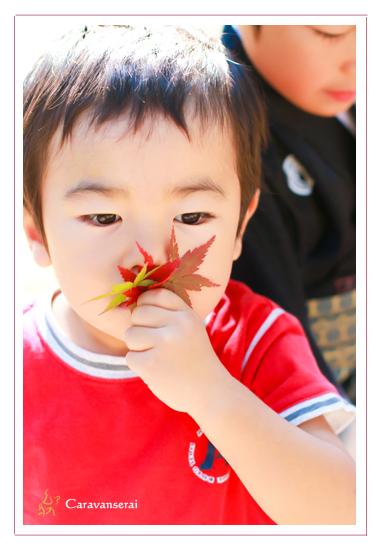 七五三の写真撮影 岐阜県多治見市 本土神社・永保寺 ロケーション撮影 出張撮影 屋外 家族写真 子供写真