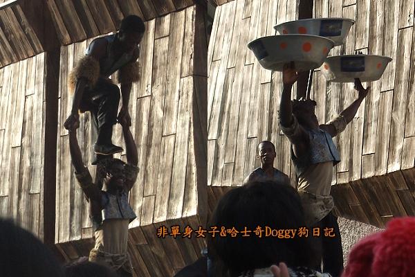 義大遊樂世界34非洲特技